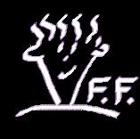 youngolive.com